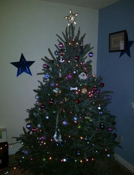 Our Christmas tree with half the bottom ornaments missing thanks to George.
